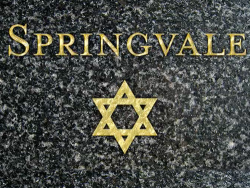 Springvale Video Still
